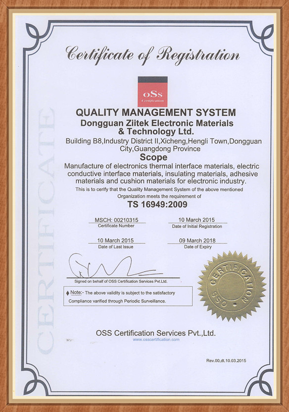 兆科电子:TS16949:2009证书